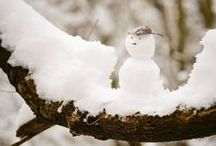 WinterTime / by AW