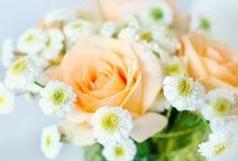 Flower Bouquets / by AW