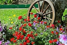 Garden / Outdoor Ideas / This is for anything outdoors. Gardening, landscaping, front porch decor, tips for weed control, etc. / by Kymberli