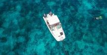 Boat Aerial Phtography / This board is for inspiration to capture great moments of your boat in action.Boat broker? Step up your game with amazing photographs of your boat listings. Start making more money today by attracting more clients. Or....Travel the world with your drone and walk the docks offering boat owners great videos of there yachts. BUY NOW PAY LATER with finance options as low as 25$ per month. 20% off all accidental crash plans until Christmas. Visit us at https://dynnexdrones.com/
