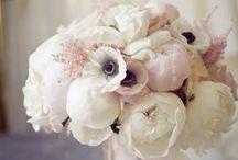 Flowers / Arrangements we like.