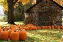 Autumn! / by Kristen Collins
