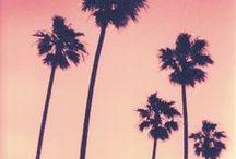 LA lifestyle / heatlhy food, yoga, and life-tips
