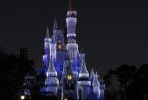 Orlando Theme Parks Tips & Tricks / Get in the know! Follow this board for tips for visiting #Orlando's theme parks with your #family.  #vacation #tips #planning  #Disney #Universal #SeaWorld