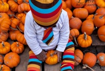 seasonal - october / fall-in! / by Cindy Laxton {Happy Thoughts & Things}