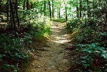 Hiking trails & camping. / Cool stuff.
