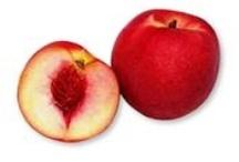 Fruits et Légumes du Printemps