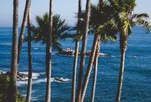 West Coast / by Randy L.
