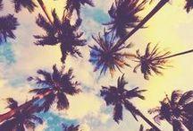 {  Art & Pretty Things  }