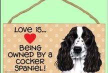 ♥ Spaniels Love ♥
