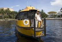 Soak Up The Fun / All the attractions your heart could desire in Greater Fort Lauderdale, from the Blue Wave Beaches and the Everglades to kid-friendly fun and sightseeing cruises and watersports #HelloSunny!