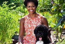 Dog-Hall of Fame...
