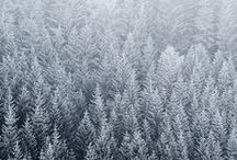 Winter's Chill / winter decor, clothing, scenery / by 86 Vintage