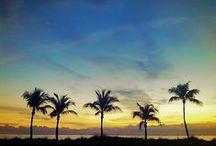 Fort Lauderdale Love