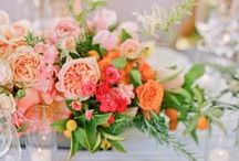 new wedding ideas / by Kristin Tierney
