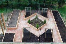 Back Yard Design & Gardening / by Tiffany Kelley