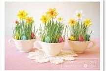Spring/ Easter / by Elizabeth Mackey