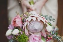 Wedding Ideas for Brides / Awesome ideas for your wedding