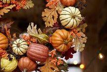 Autumn / Everything for Autumn