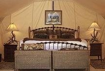Camping/Glamping