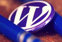 Website/Blogging Insights