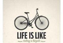 Bicicletas/Bicycles
