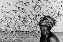 Ocean Inspirations & News