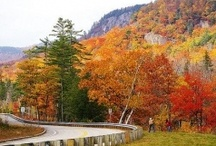 New England / by Alyson | New England Living