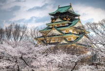 Crazy About Japan