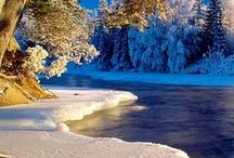 Winter Time-Full Of Beauty / by Sharon Corcilius