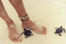Get Your Beach Goddess On! / These are a few of my favorite things...