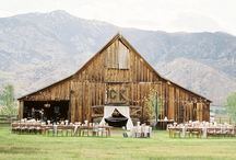Wedding Decor and Details / Photo as and photography of Wedding Decor and wedding Details