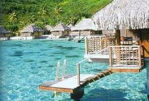 Yo quiero ir aquí