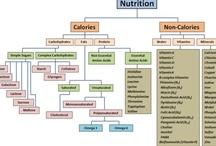 Nutrition / by Jess K.