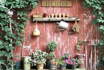 Herbs and Gardening For Her