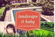 Landscape it Baby! / Awesome ideas on how to make your home's landscape and curb appeal dynamic. Visit http://www.arealandandhomes.info