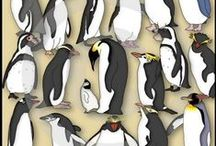 Penguins Theme / Preschool, kindergarten, early elementary theme / unit curriculum, crafts, songs, finger plays, printables, games, math, science, ideas.