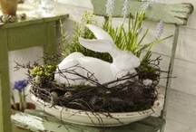 Easter & Spring / by Susie {a.k.a. Mrs. V}