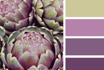 Color Combos / by Susie {a.k.a. Mrs. V}
