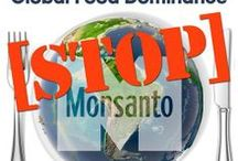 """// No to GMO // / """"You can fool some people sometimes, but you can't fool all the people all the time, so now you see the light, stand up for your right!"""" -- Bob Marley"""