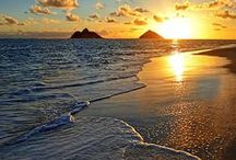 """Beach Bum / """"Mother Mother Ocean, I have heard your call.""""  ― Jimmy Buffett   / by Kathy's LittleThings"""