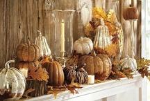 Seasonal Decorations / Inspiration for the Fall Season