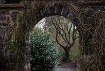 The Secret Garden / Feeding my obsession with Frances Hodgson Burnett's wonderful book.
