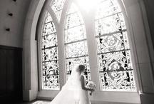 blushing brides / by Melissa Huskins