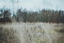 rainy days & reverie / lost in a world of thoughts