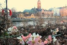♥ Norrköping / Sweden ♥ / Pictures from Norrköping / Sweden - let us show the World our beautiful City.