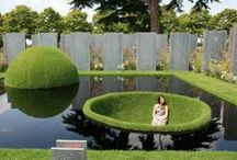 Plants & Landscaping / The nitty-gritty on growing plants -- both indoors and out -- and creative landscaping ideas.