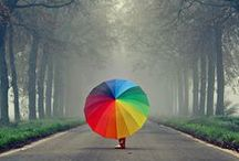 Photography & Art: Rainbow Colours / Lots of colour here