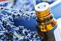 Essential Oils 101 / Getting started with essential oils.