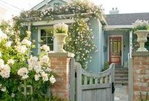 How does your garden grow? / Outdoor haven. / by Keely Griffin